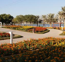 Один из парков в Дубае своими цветами может немного напомнить осень, однако это обманичиво, лето в самом разгаре!